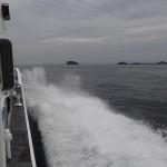 日間賀島。